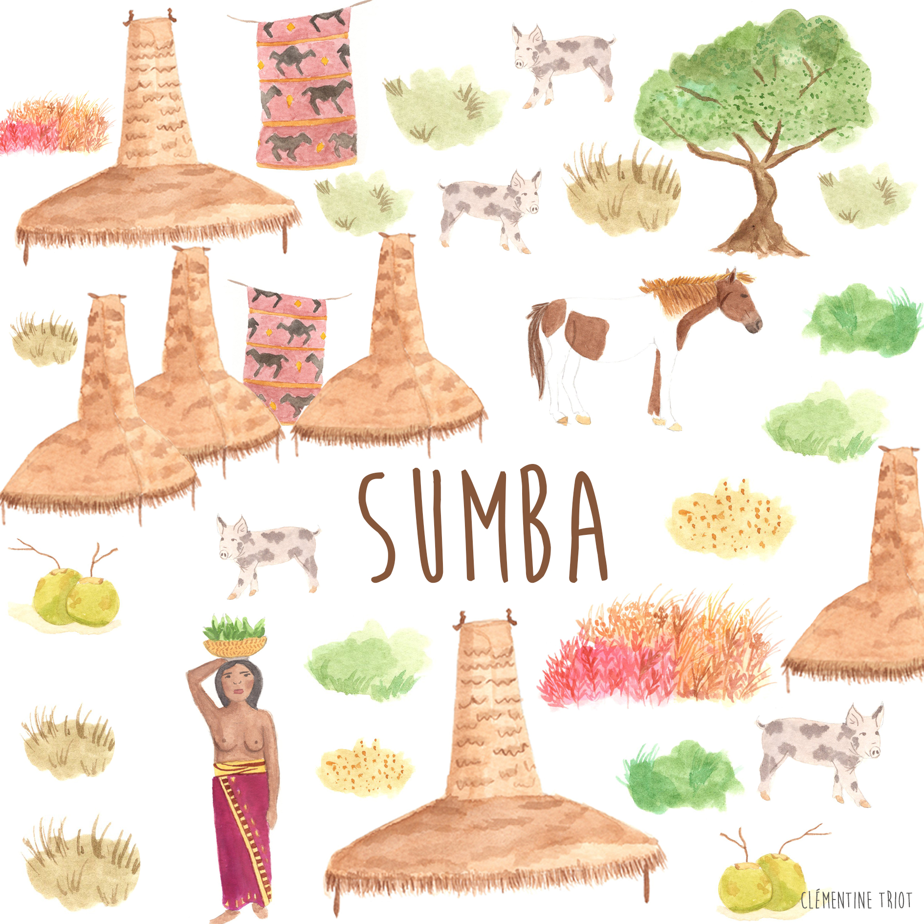 Clementine Triot Illustrations Sumba illustrated diary