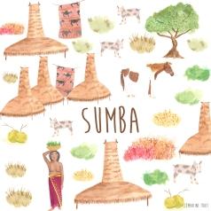 Sumba illustrated diary