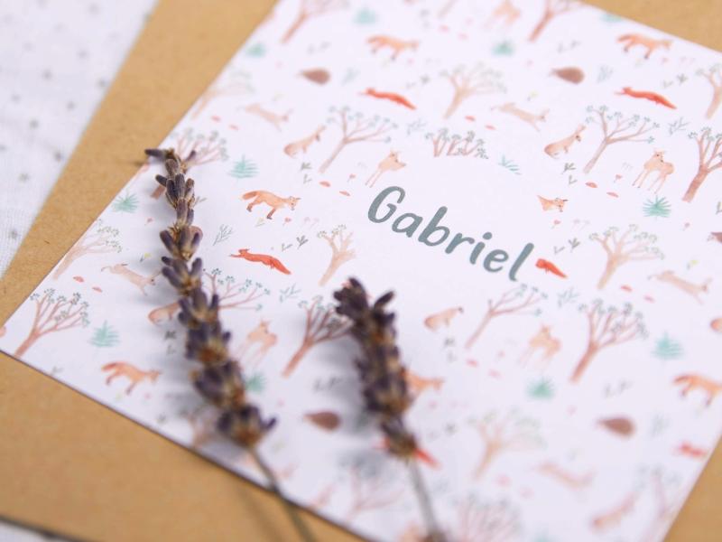 Birth Announcement - Gabriel